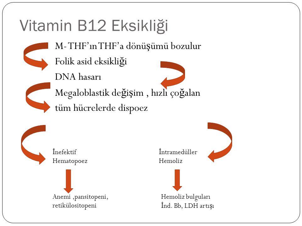 Vitamin B12 Eksikliği M- THF'ın THF'a dönüşümü bozulur Folik asid eksikliği DNA hasarı Megaloblastik değişim , hızlı çoğalan tüm hücrelerde dispoez
