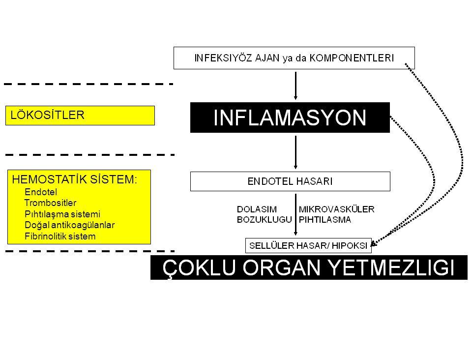 LÖKOSİTLER HEMOSTATİK SİSTEM: Endotel Trombositler Pıhtılaşma sistemi