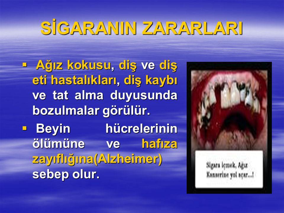 SİGARANIN ZARARLARI Ağız kokusu, diş ve diş eti hastalıkları, diş kaybı ve tat alma duyusunda bozulmalar görülür.