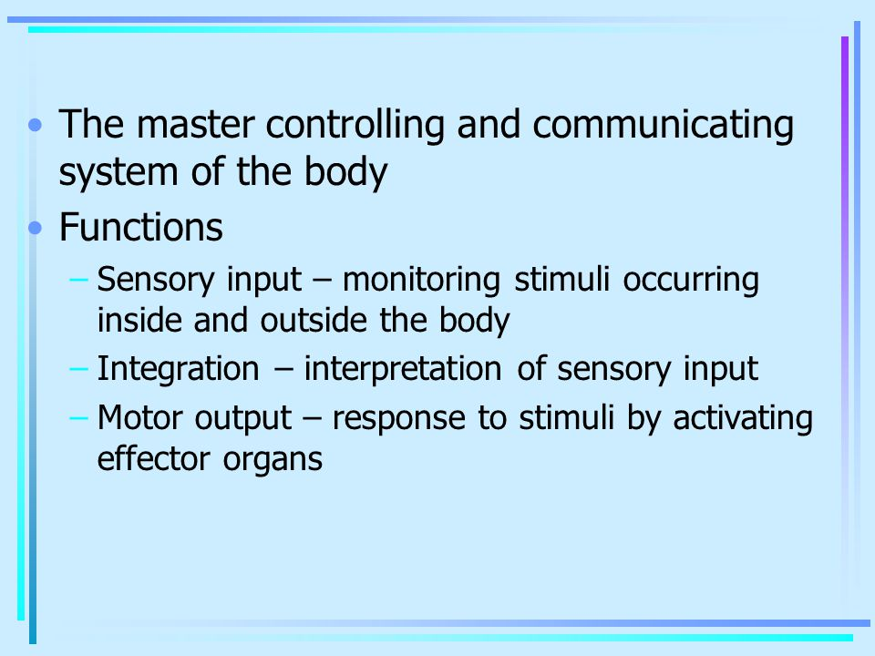 The master controlling and communicating system of the body Functions