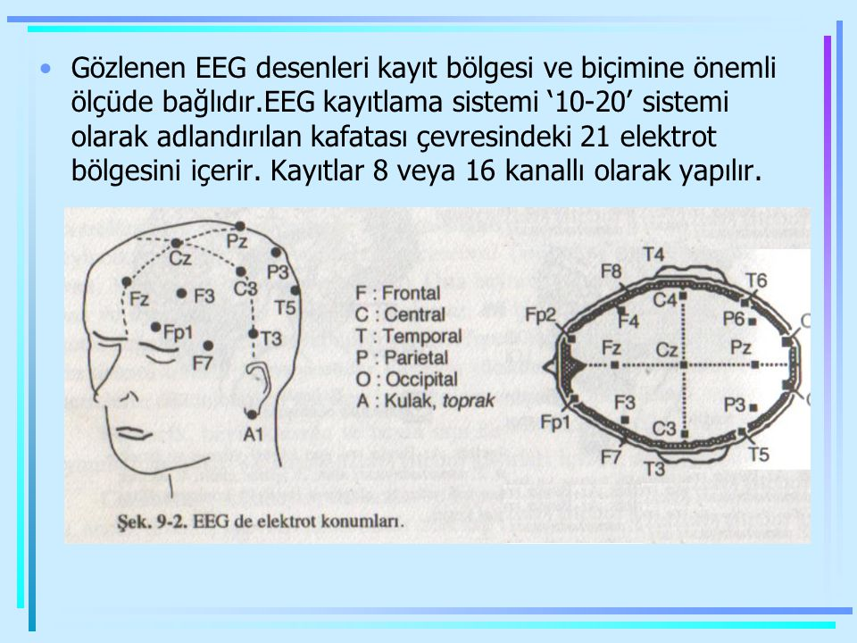 Gözlenen EEG desenleri kayıt bölgesi ve biçimine önemli ölçüde bağlıdır.EEG kayıtlama sistemi '10-20' sistemi olarak adlandırılan kafatası çevresindeki 21 elektrot bölgesini içerir.