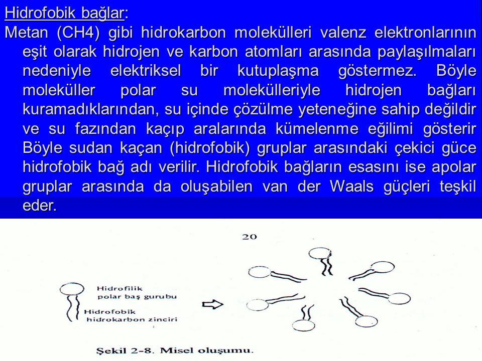 Hidrofobik bağlar: