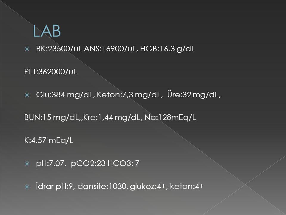 LAB BK:23500/uL ANS:16900/uL, HGB:16.3 g/dL PLT:362000/uL
