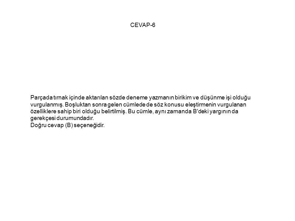 CEVAP-6