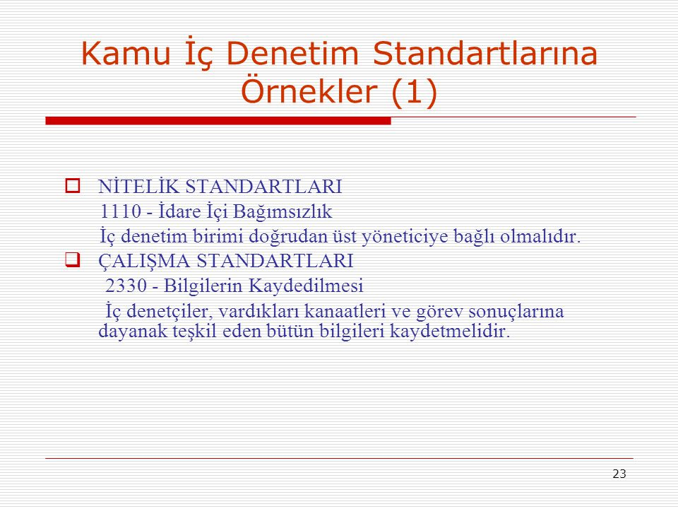 Kamu İç Denetim Standartlarına Örnekler (1)