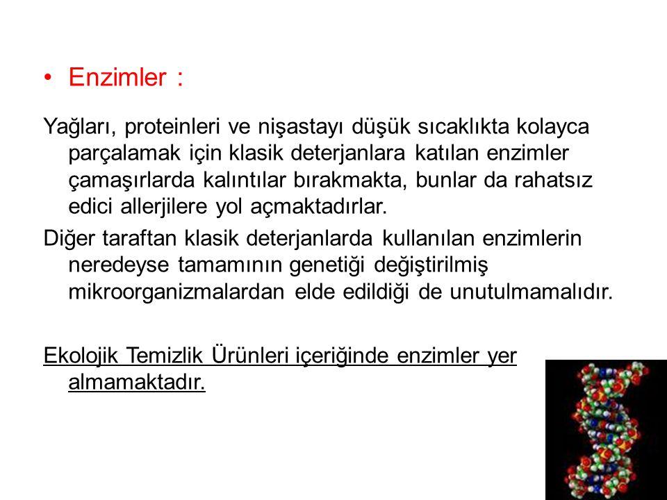 Enzimler :