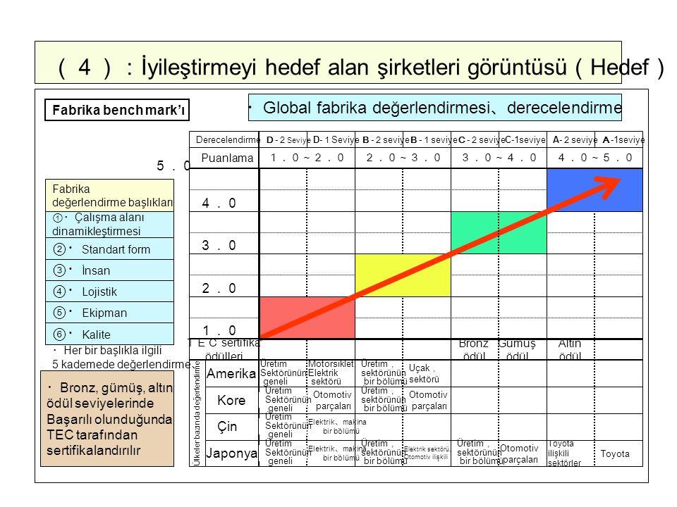 (4):İyileştirmeyi hedef alan şirketleri görüntüsü(Hedef)