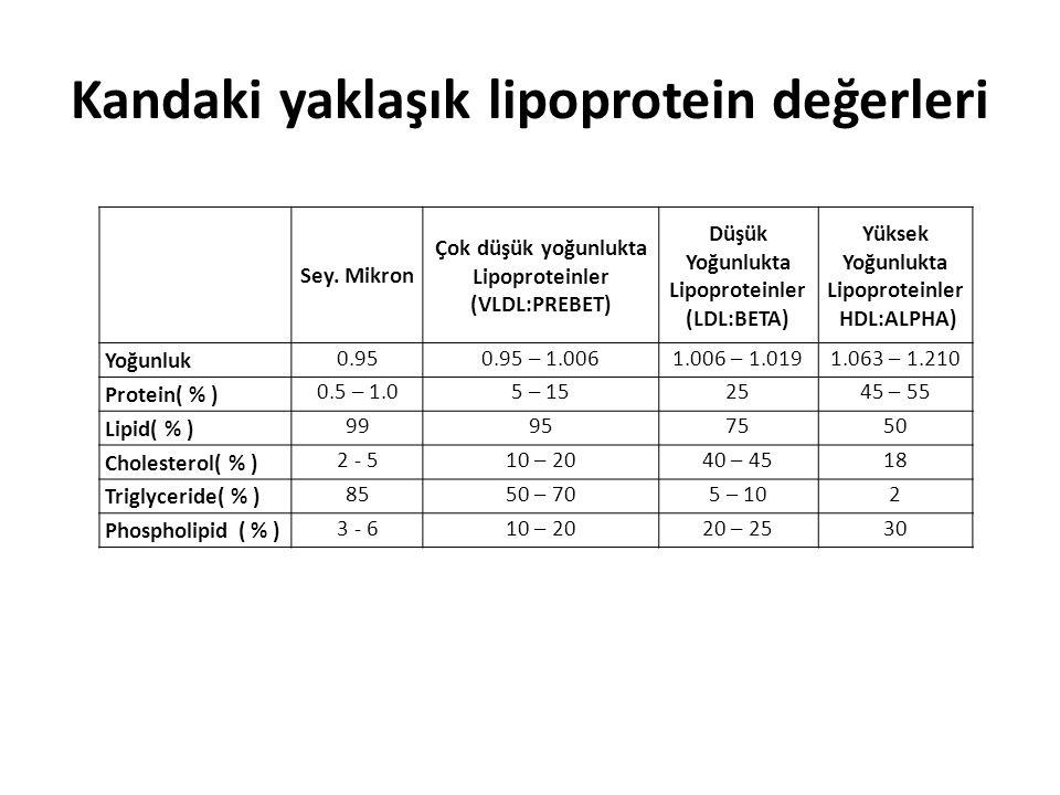 Kandaki yaklaşık lipoprotein değerleri