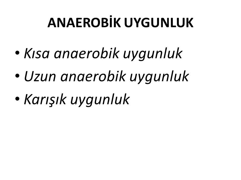 Kısa anaerobik uygunluk Uzun anaerobik uygunluk Karışık uygunluk