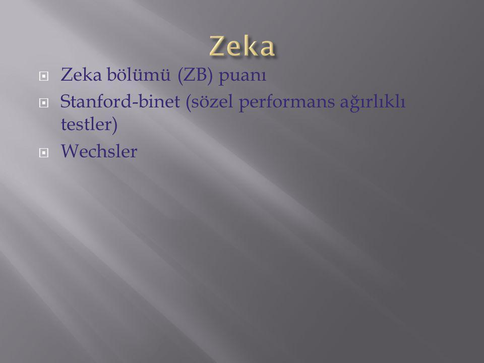 Zeka Zeka bölümü (ZB) puanı