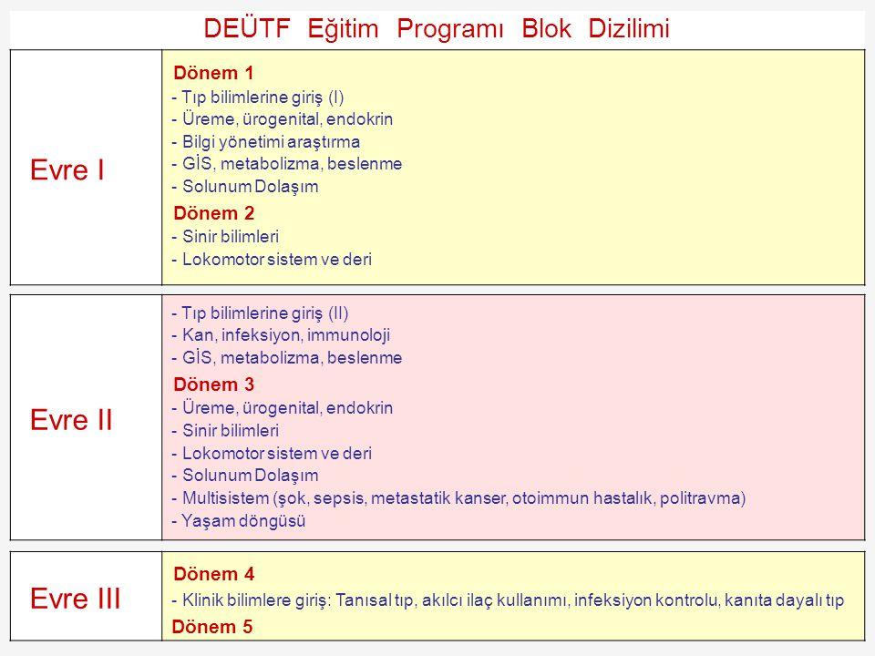 DEÜTF Eğitim Programı Blok Dizilimi