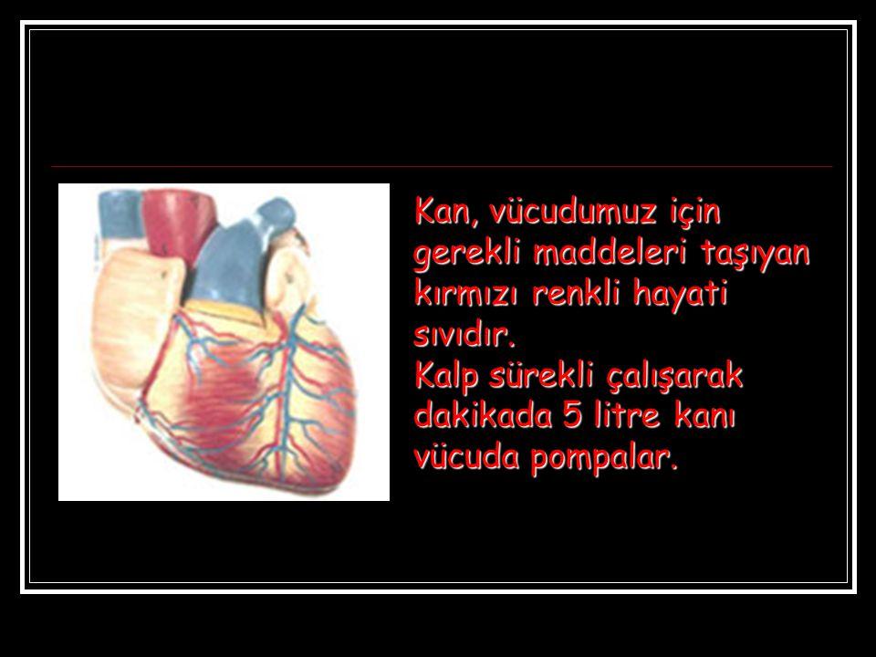 Kan, vücudumuz için gerekli maddeleri taşıyan kırmızı renkli hayati sıvıdır.