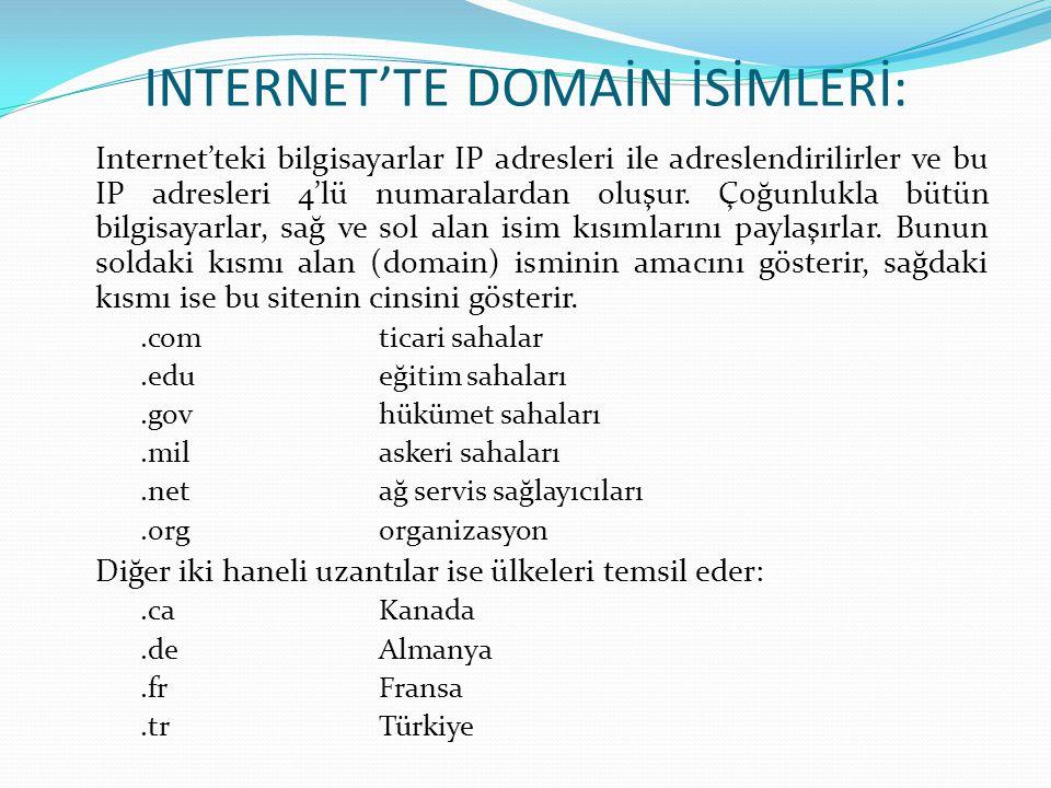 INTERNET'TE DOMAİN İSİMLERİ: