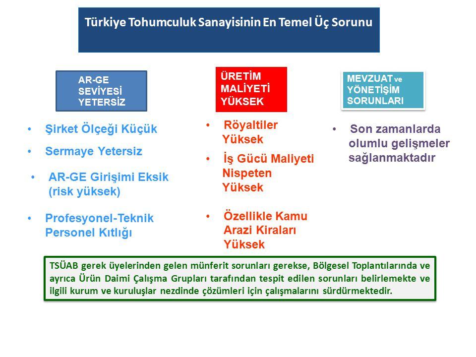 Türkiye Tohumculuk Sanayisinin En Temel Üç Sorunu Sorunu: