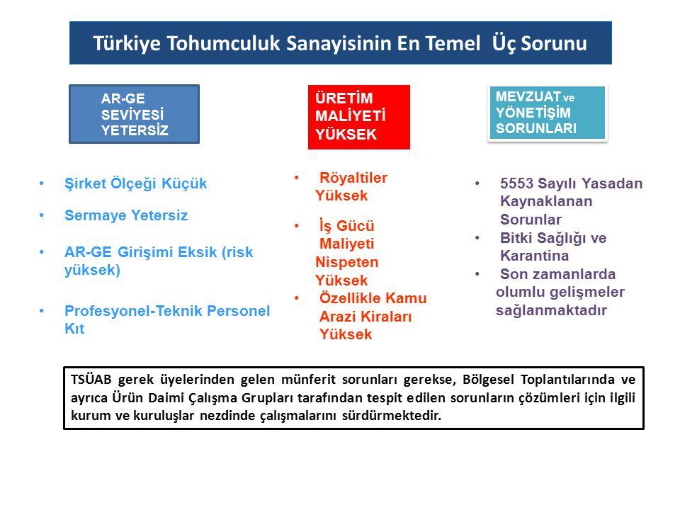 Türkiye Tohumculuk Sanayisinin En Temel Üç Sorunu