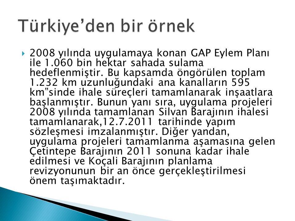 Türkiye'den bir örnek