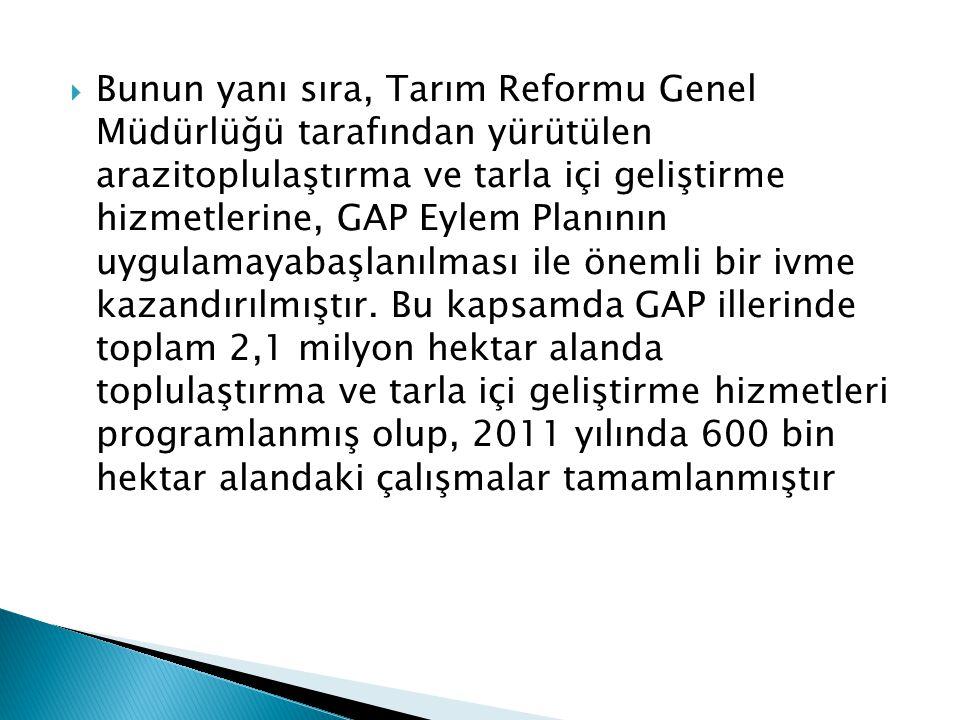 Bunun yanı sıra, Tarım Reformu Genel Müdürlüğü tarafından yürütülen arazitoplulaştırma ve tarla içi geliştirme hizmetlerine, GAP Eylem Planının uygulamayabaşlanılması ile önemli bir ivme kazandırılmıştır.