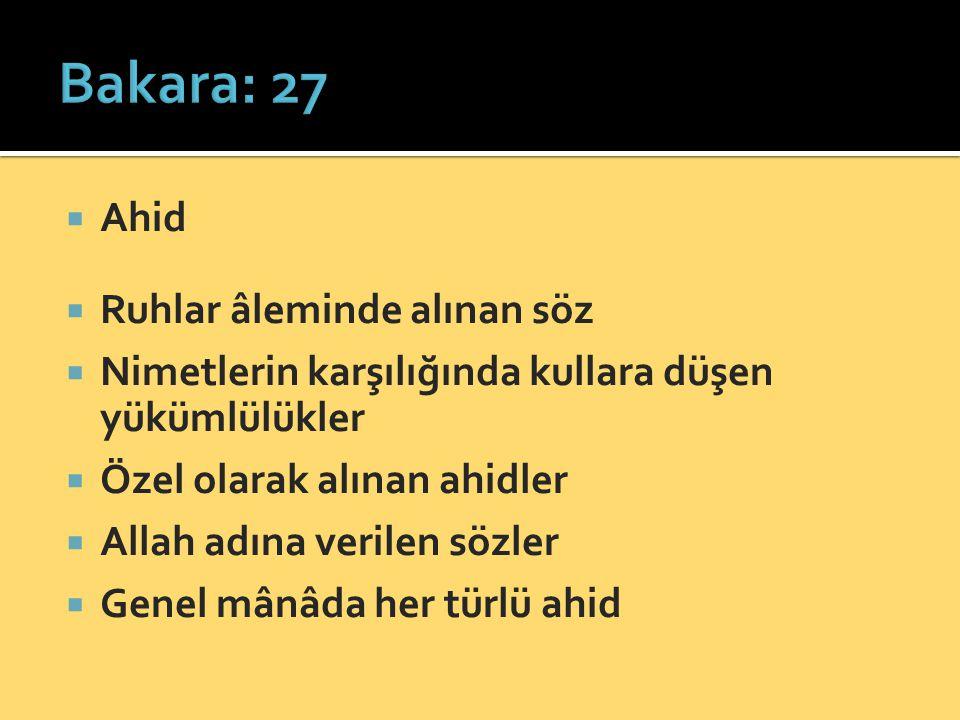 Bakara: 27 Ahid Ruhlar âleminde alınan söz
