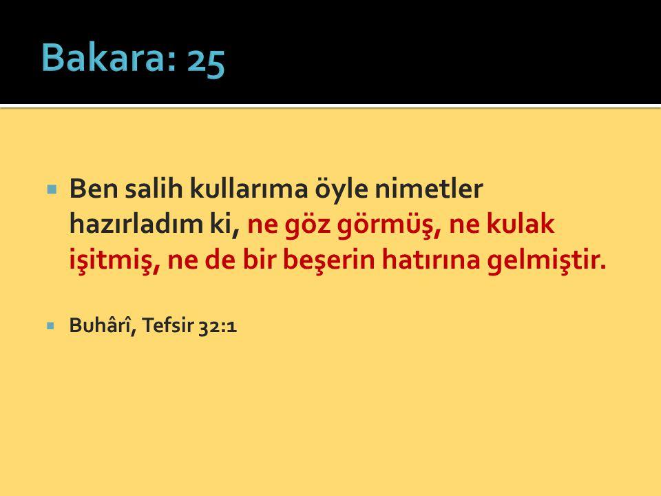 Bakara: 25 Ben salih kullarıma öyle nimetler hazırladım ki, ne göz görmüş, ne kulak işitmiş, ne de bir beşerin hatırına gelmiştir.