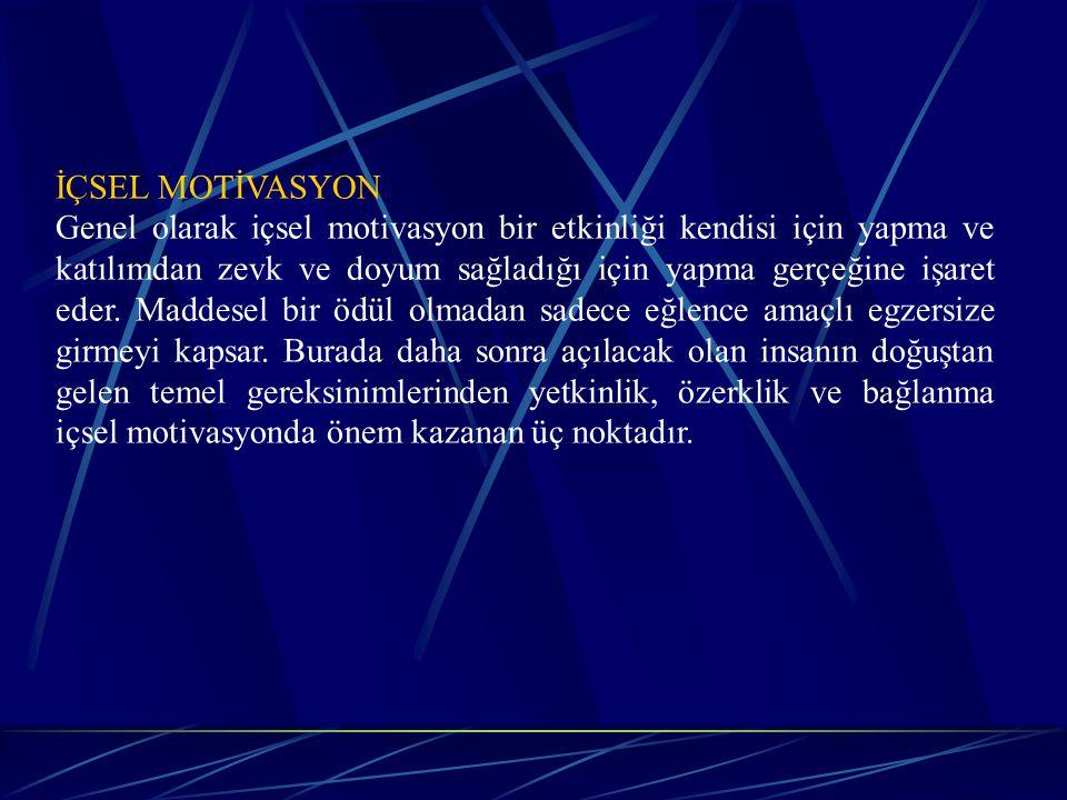İÇSEL MOTİVASYON