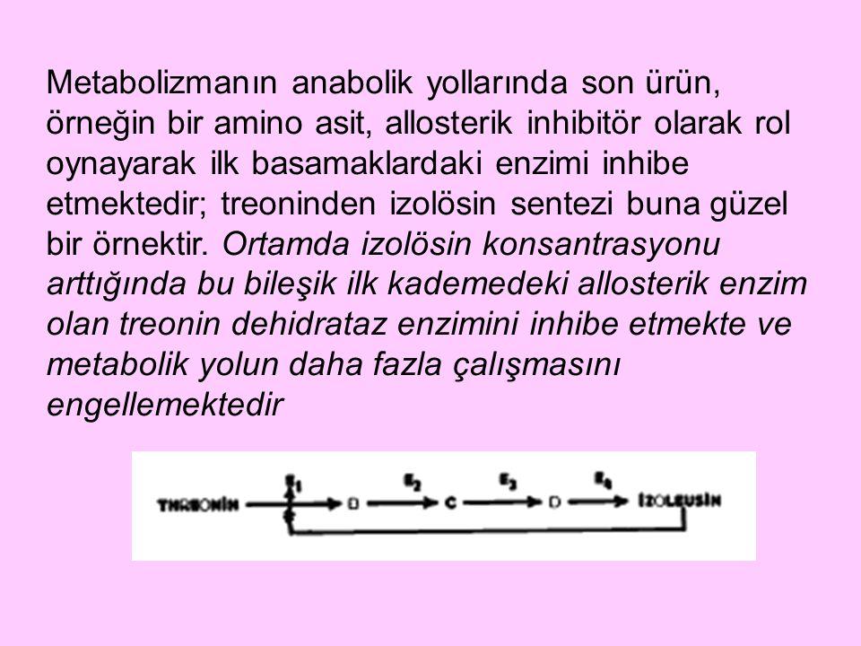 Metabolizmanın anabolik yollarında son ürün, örneğin bir amino asit, allosterik inhibitör olarak rol oynayarak ilk basamaklardaki enzimi inhibe etmektedir; treoninden izolösin sentezi buna güzel bir örnektir.