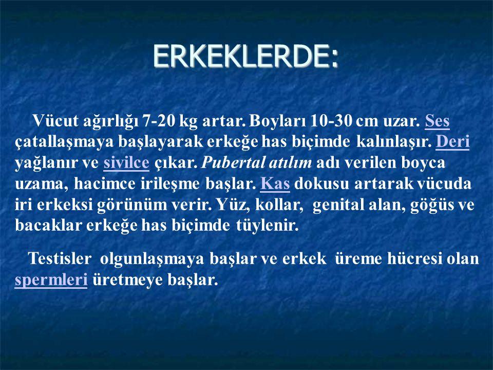 ERKEKLERDE: