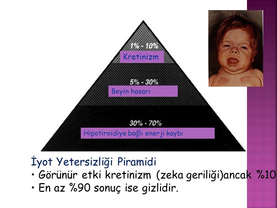 İyot Yetersizliği Piramidi