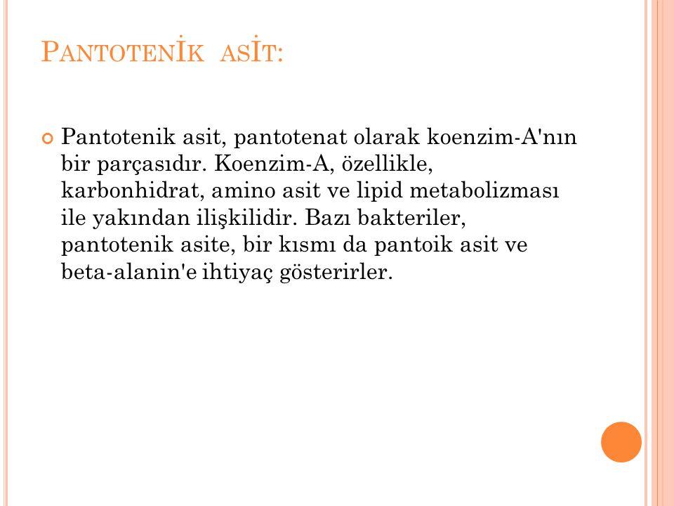 Pantotenİk asİt: