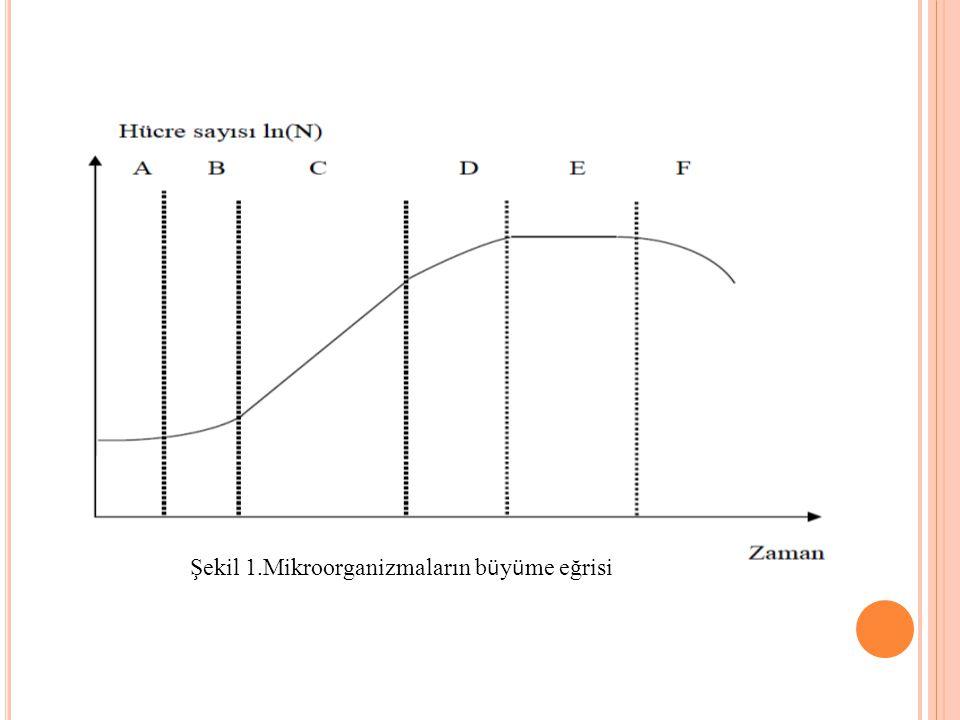 Şekil 1.Mikroorganizmaların büyüme eğrisi