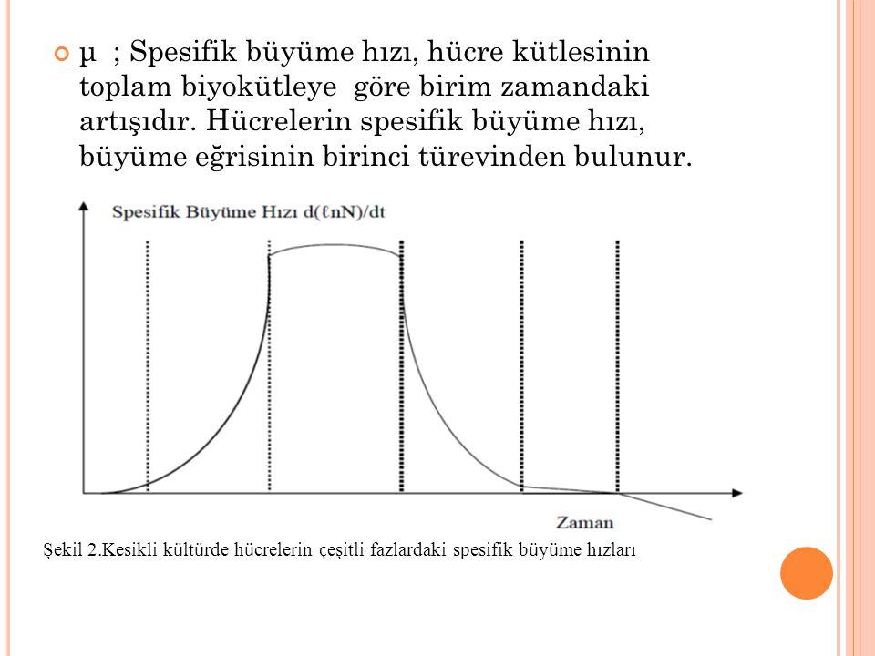 μ ; Spesifik büyüme hızı, hücre kütlesinin toplam biyokütleye göre birim zamandaki artışıdır. Hücrelerin spesifik büyüme hızı, büyüme eğrisinin birinci türevinden bulunur.