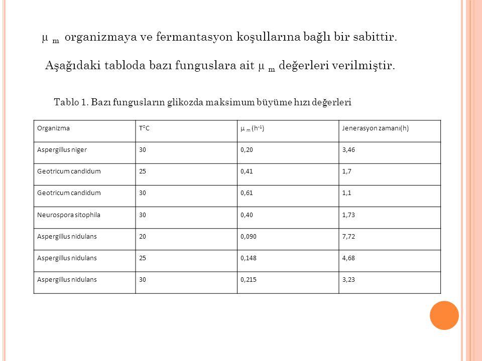 µ m organizmaya ve fermantasyon koşullarına bağlı bir sabittir.