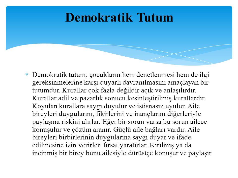 Demokratik Tutum