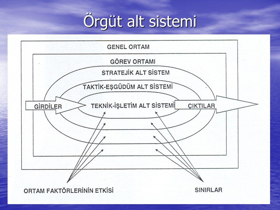Örgüt alt sistemi