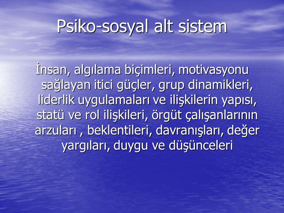 Psiko-sosyal alt sistem