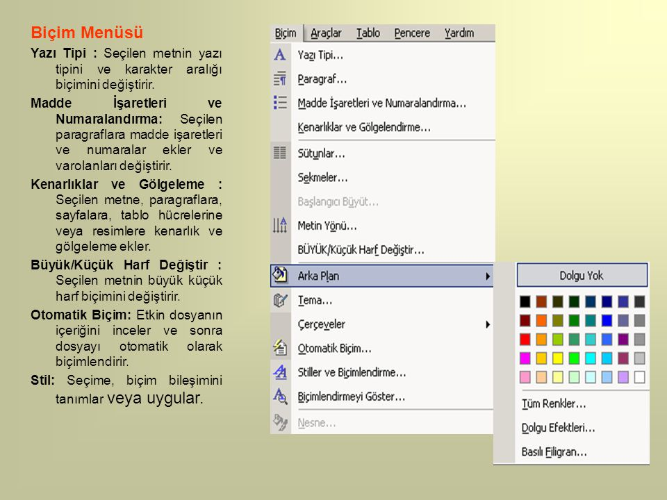Biçim Menüsü Yazı Tipi : Seçilen metnin yazı tipini ve karakter aralığı biçimini değiştirir.