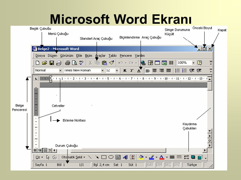 Microsoft Word Ekranı