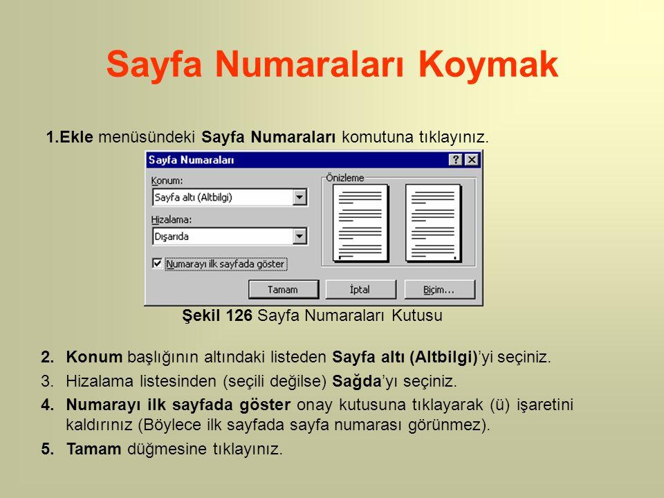 Sayfa Numaraları Koymak