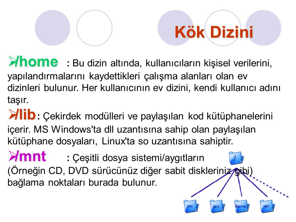 Kök Dizini