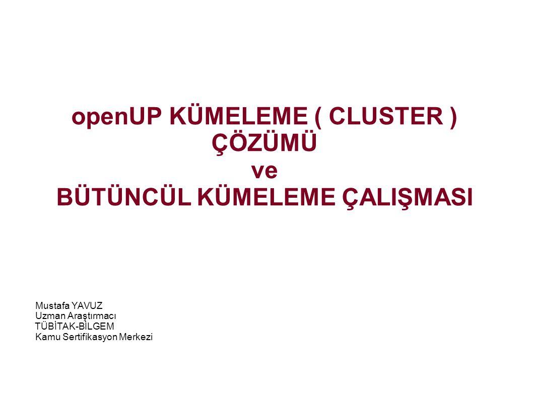openUP KÜMELEME ( CLUSTER ) ÇÖZÜMÜ BÜTÜNCÜL KÜMELEME ÇALIŞMASI