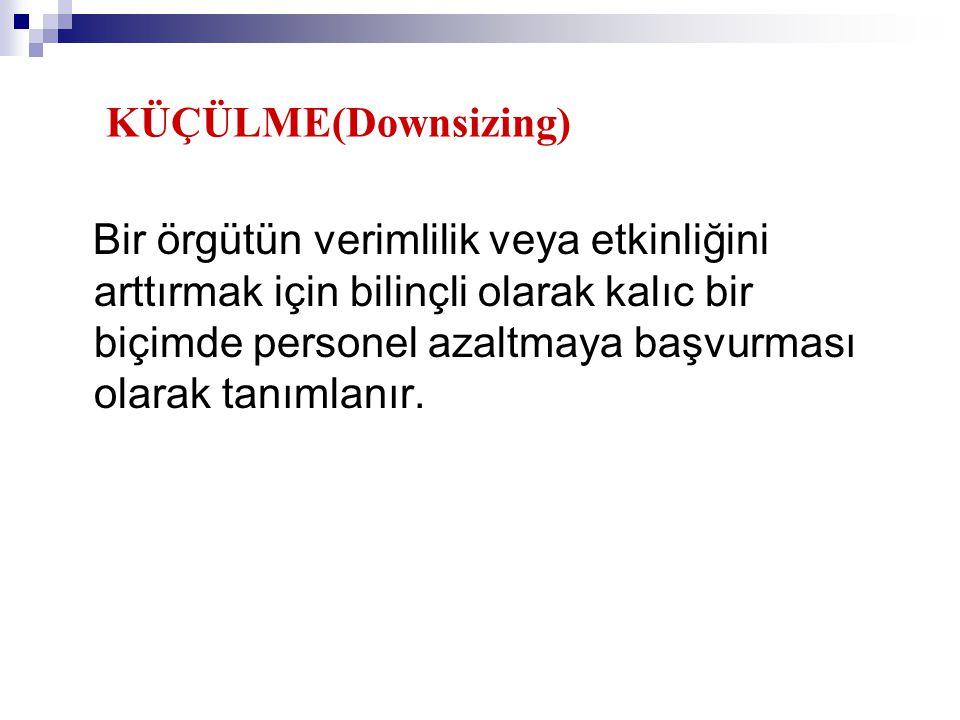 KÜÇÜLME(Downsizing)