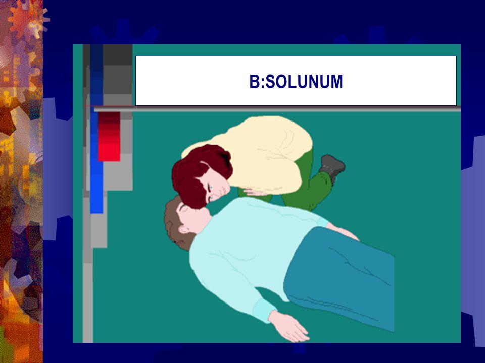 B:SOLUNUM
