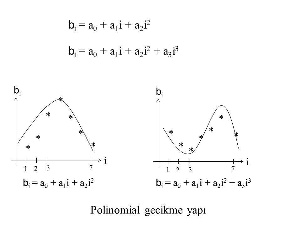 Polinomial gecikme yapı