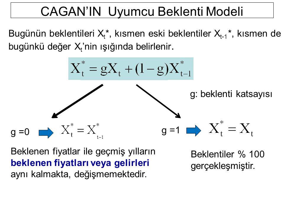 CAGAN'IN Uyumcu Beklenti Modeli