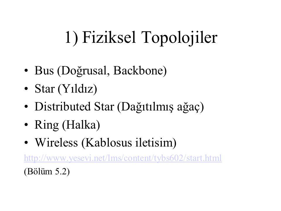 1) Fiziksel Topolojiler