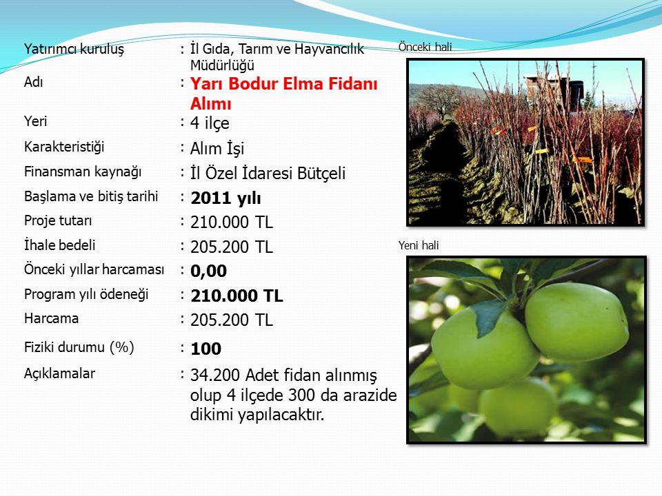 Yarı Bodur Elma Fidanı Alımı 4 ilçe Alım İşi İl Özel İdaresi Bütçeli
