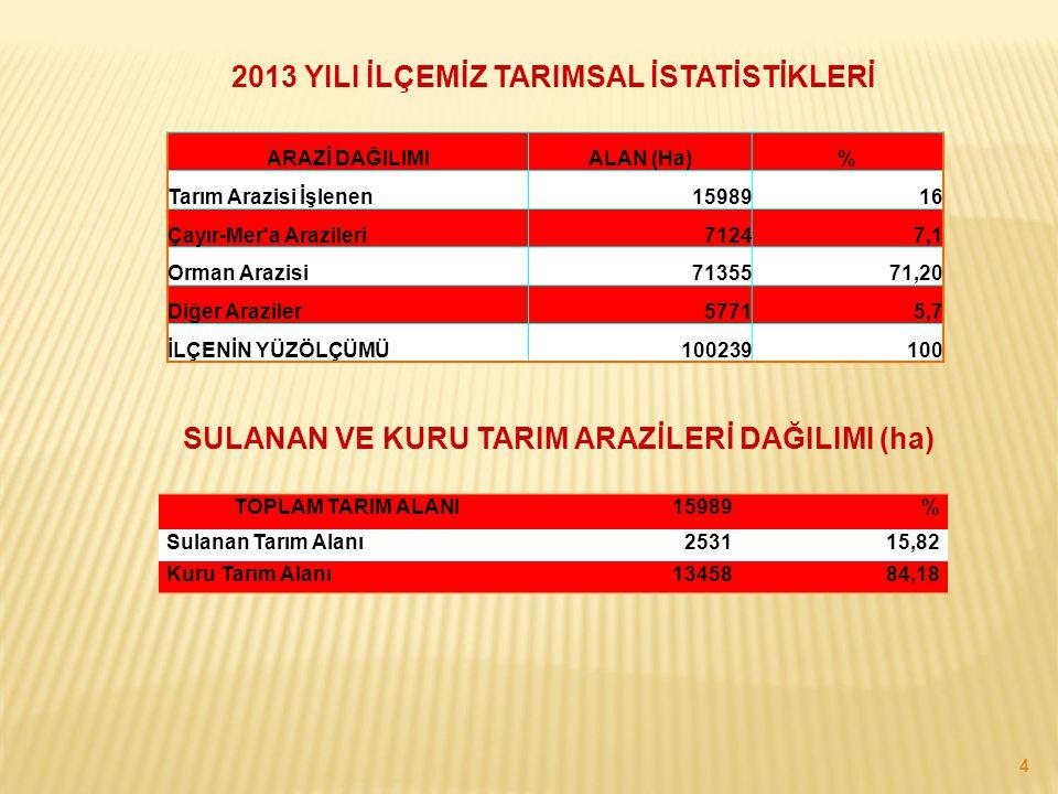 2013 YILI İLÇEMİZ TARIMSAL İSTATİSTİKLERİ