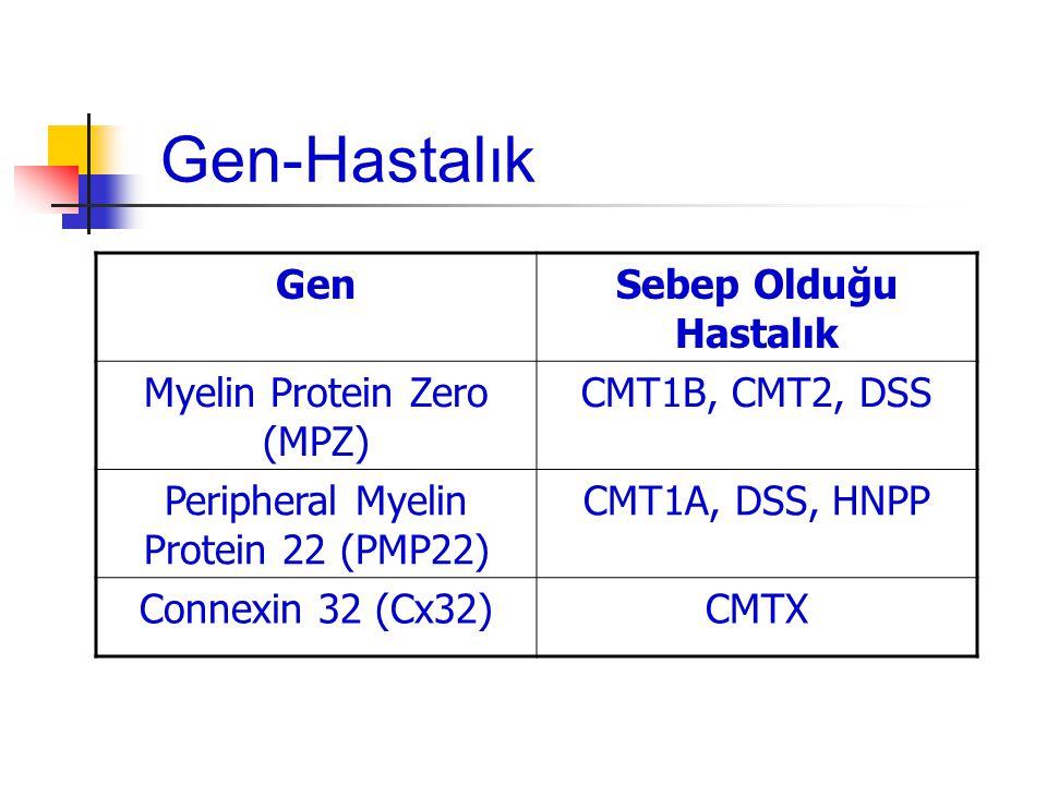 Gen-Hastalık Gen Sebep Olduğu Hastalık Myelin Protein Zero (MPZ)