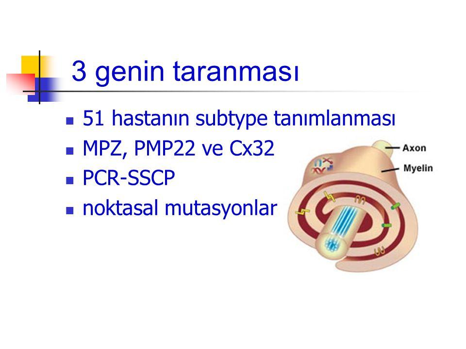 3 genin taranması 51 hastanın subtype tanımlanması MPZ, PMP22 ve Cx32