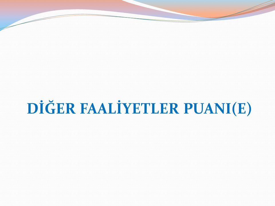 DİĞER FAALİYETLER PUANI(E)