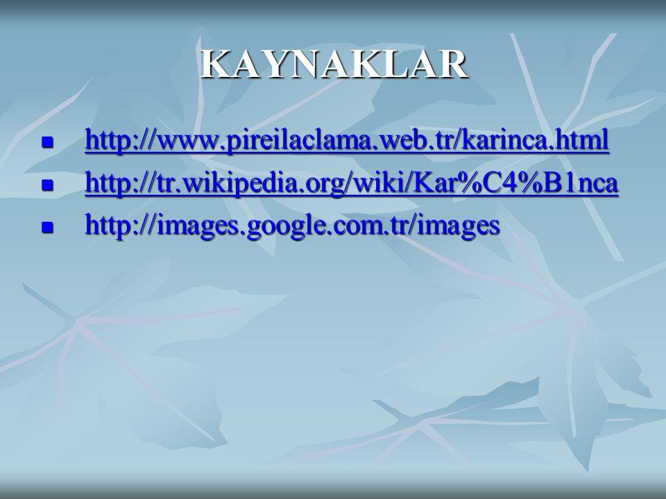 KAYNAKLAR http://www.pireilaclama.web.tr/karinca.html